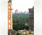NORTHWEST CORNER TWO BEDROOM WITH CENTRAL PARK VIEWS! CARNEGIE HILL BEAUTY!