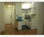 Terrific 1 bedroom apartment near Gershwin Theatre, Ambassador Theatre,  The Richard Rogers Theatre, Winter Garden Theatre and West Side Theatre, Morgan Stanley Building, Port Authority Bus Terminal, Circle Line Cruises and Times Square.