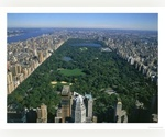 Manhattan Studio Apartment for Rent - Absolutely Fabulous Opportunity - Central Park View